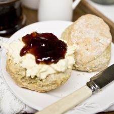 Delicious Cream Tea at Fursdon