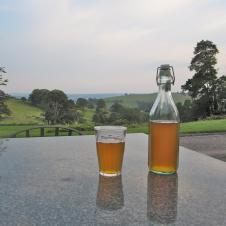 Fursdon Cider and the view