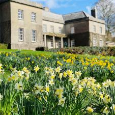 Fursdon-House-and-Gardens-Easter-Monday-Trail